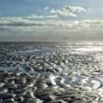 Naturraum Wattenmeer an der Nordsee