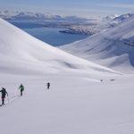Skitouren zwischen Nordlichtern & Fjorden