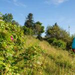 Best of Wandern: Wanderurlaub im Rundum-sorglos-Paket
