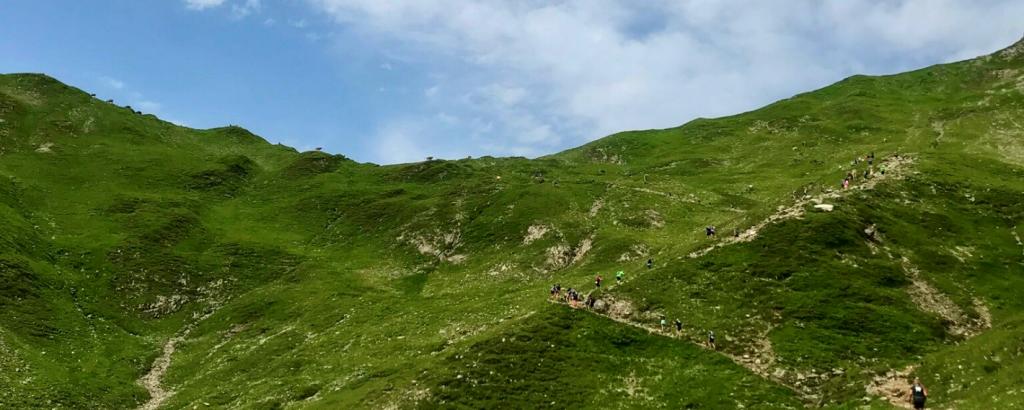Gründe Bergwiese mit Trailrunnerinnen