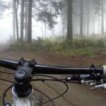 Granitland: Mit dem Bike das Mühlviertel erkunden