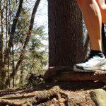 Produkttest Trailrunning-Schuh Scarpa Ribelle Run
